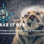 Shake it off – transformująca moc ruchu w drodze do samouzdrawiania